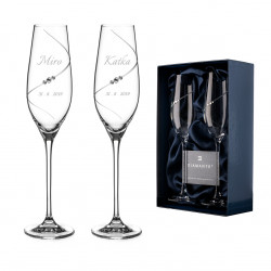 Silhouette svatební sklenice s gavírovaním
